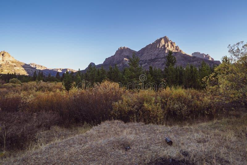 日落在一个草甸在秋季期间的Wyomings Bridger-Teton国家森林里 图库摄影