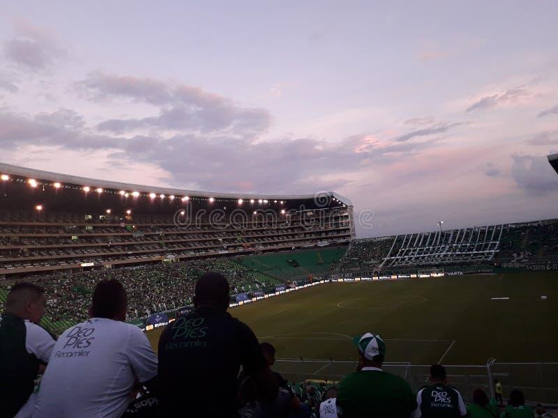 日落在体育场内 库存图片