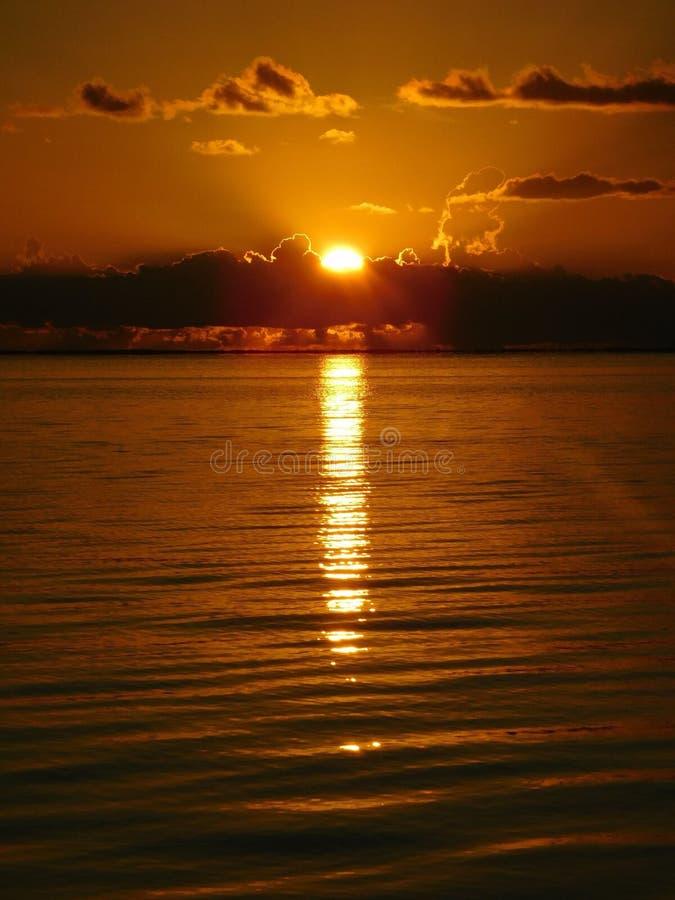 日落在佛罗里达,钥匙海岛 免版税库存图片