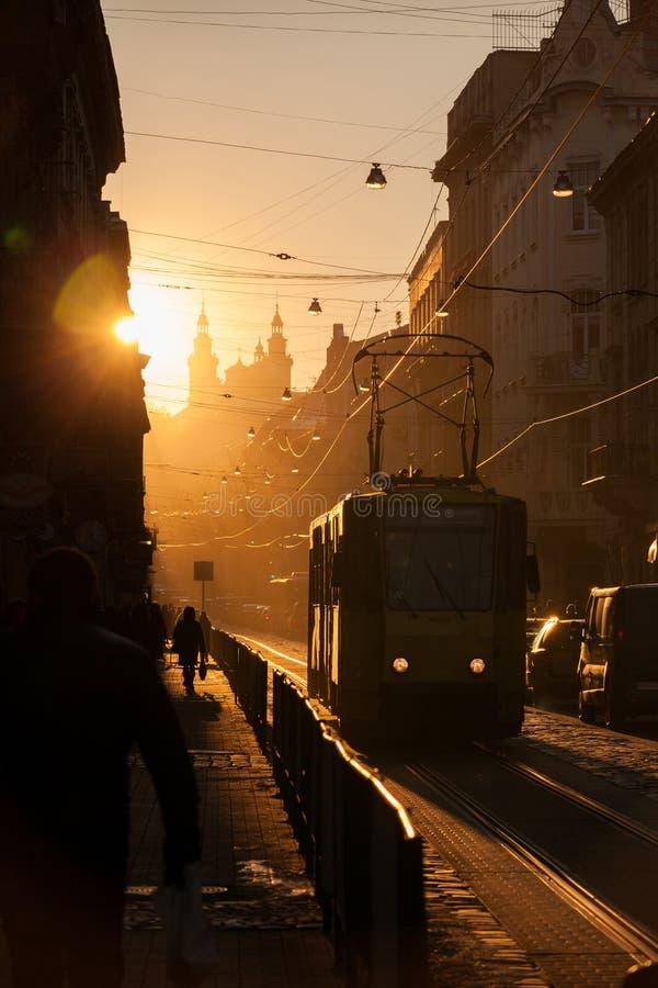 日落在利沃夫州 多罗申科街 历史市中心 免版税库存图片