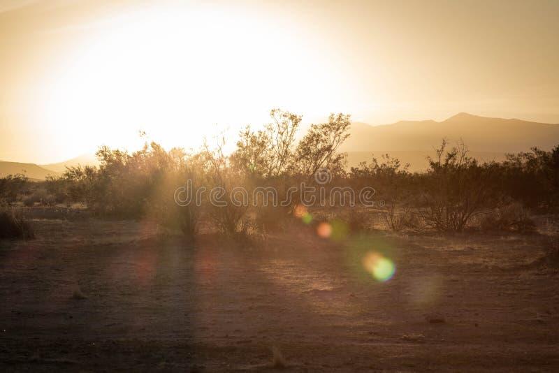 日落在加利福尼亚沙漠 免版税库存照片