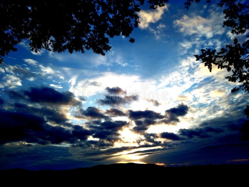 日落在森林里 免版税库存图片