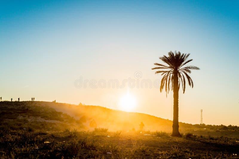 日落在沙漠在突尼斯 库存照片