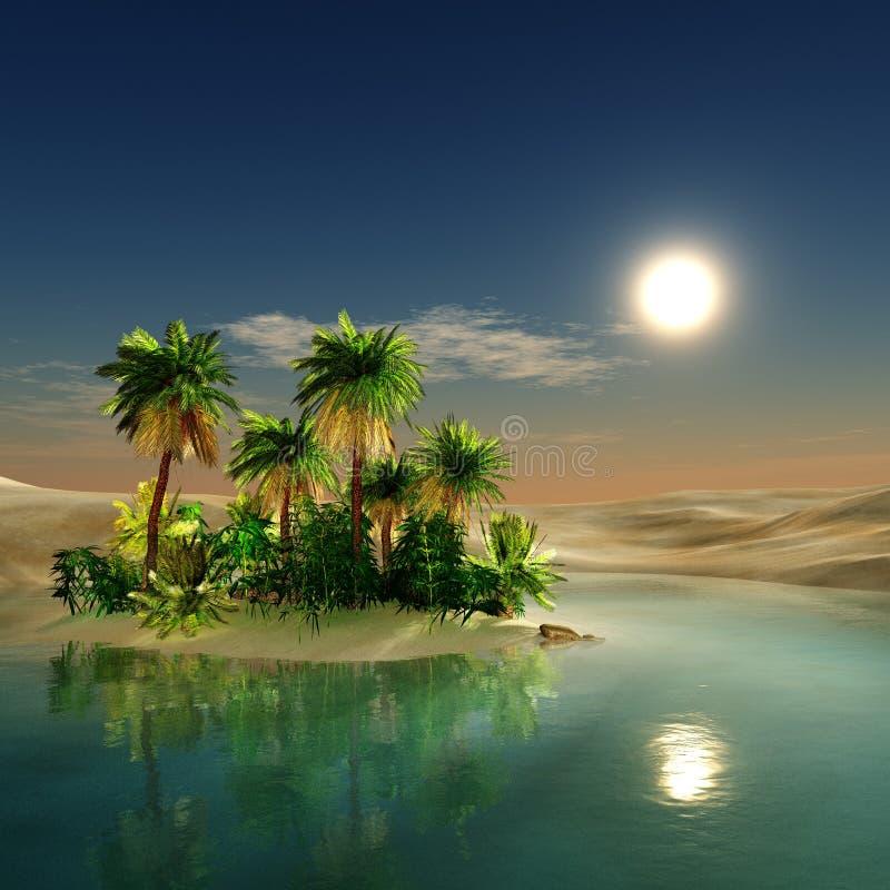 绿洲 日落在沙漠 库存图片