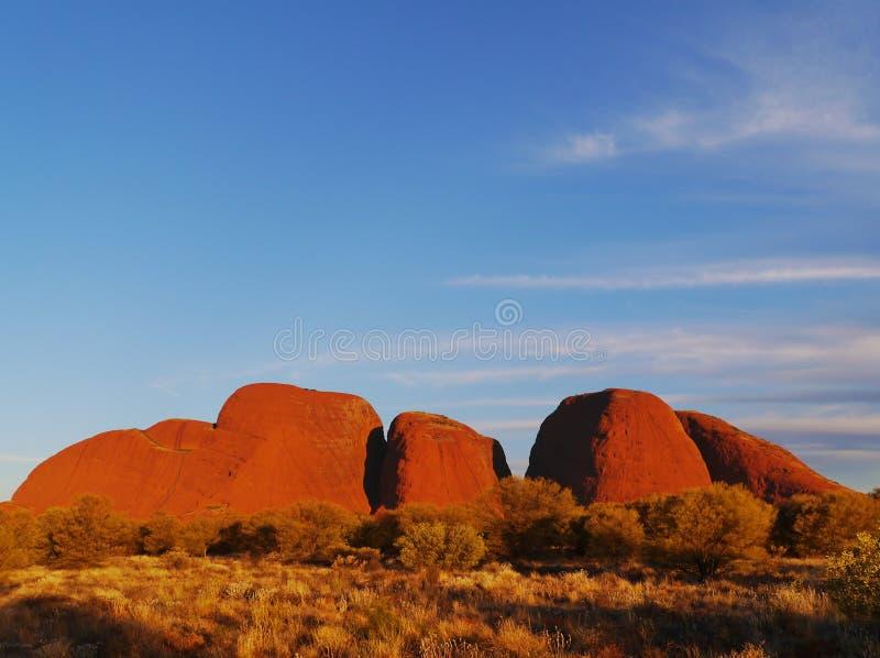 日落在澳大利亚红色区域 库存照片