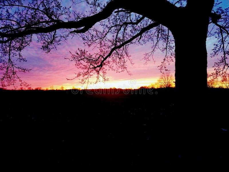日落在田纳西 库存图片