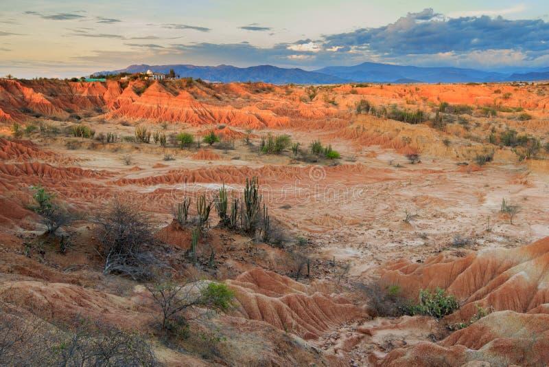 日落在红色沙漠 免版税库存图片
