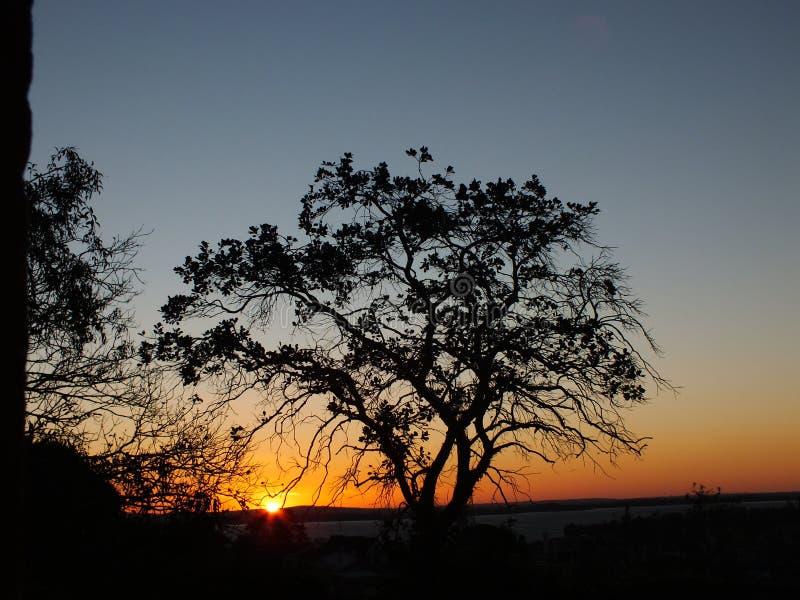 日落在阿雷格里港,巴西 免版税库存图片