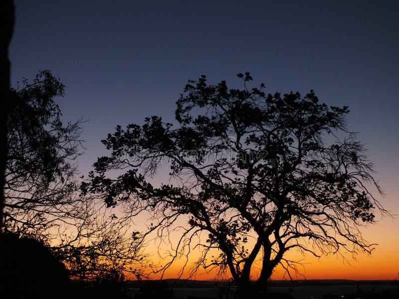 日落在阿雷格里港,巴西 库存照片