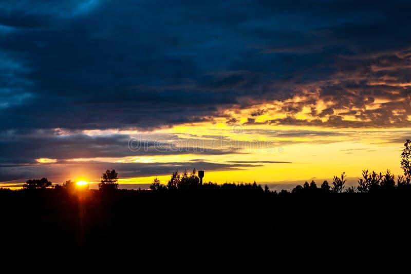 日落在黑暗的森林里 免版税库存照片