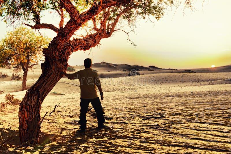 日落在Badan Jaran沙漠 免版税库存图片