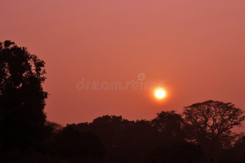 日落在Lodhi庭院德里里 库存图片