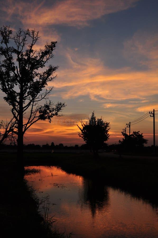 日落天空和米领域 免版税库存图片