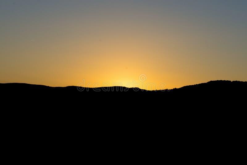 日落天空日出与白色母牛的风景背景 免版税库存照片