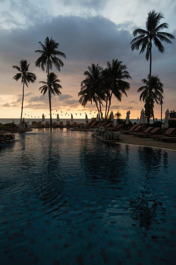 日落时在迷人的热带海滩上的棕榈树 自然 库存照片