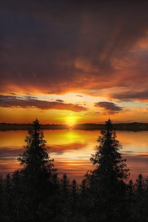 Download 日落树剪影 库存照片. 图片 包括有 云杉, 日落, 日出, 剪影, 现出轮廓, 反映, 结构树, 天空 - 72368328