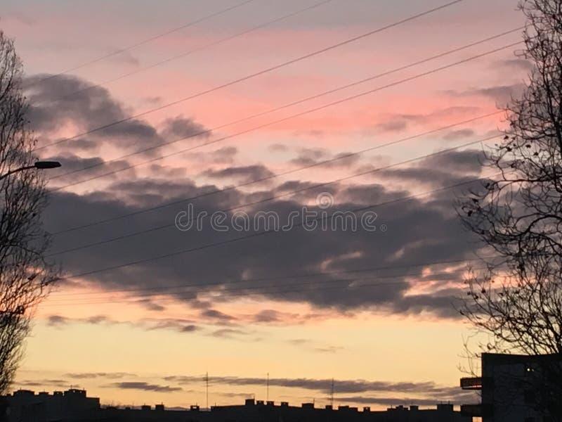 日落淡粉红色天空 库存照片