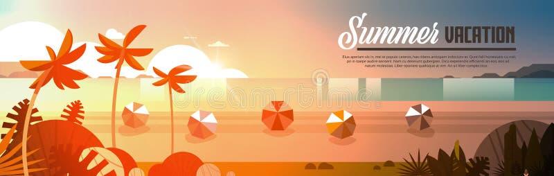 日落热带棕榈滩球观看暑假海边海海洋平的横幅水平的拷贝空间 库存例证