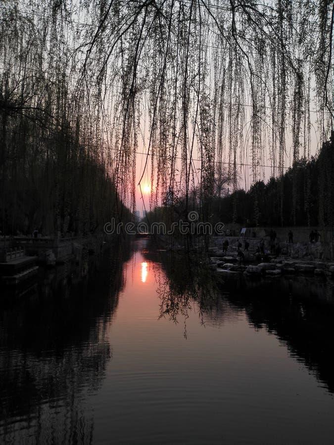 日落焕发在春天在黄昏的被反射 免版税库存照片