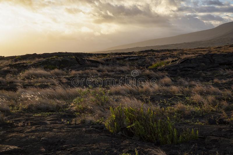 日落熔岩荒野 免版税库存照片