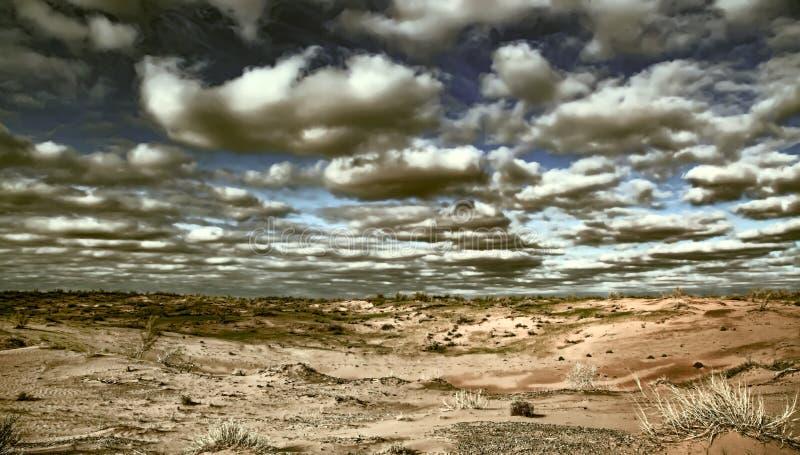 日落的卡拉库姆沙漠 中亚沙漠的景观 应用的Instagram筛选器 图库摄影