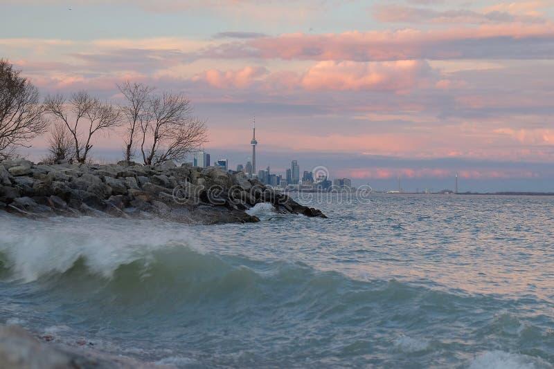 日落的安大略湖与多伦多市地平线和加拿大国家电视塔在背景中 免版税库存图片