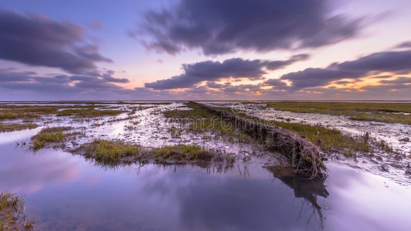 日落的沃登海潮汐沼泽 库存照片