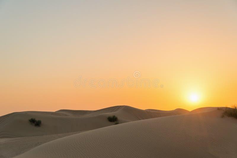 日落的沙漠 库存图片