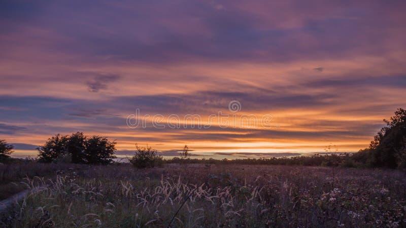 日落的湖 草围拢的图象,石头在镇静水中 免版税库存照片