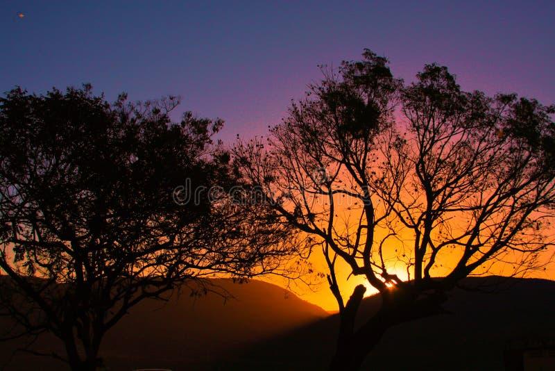 日落的神奇风景在巴西大草原的 免版税图库摄影