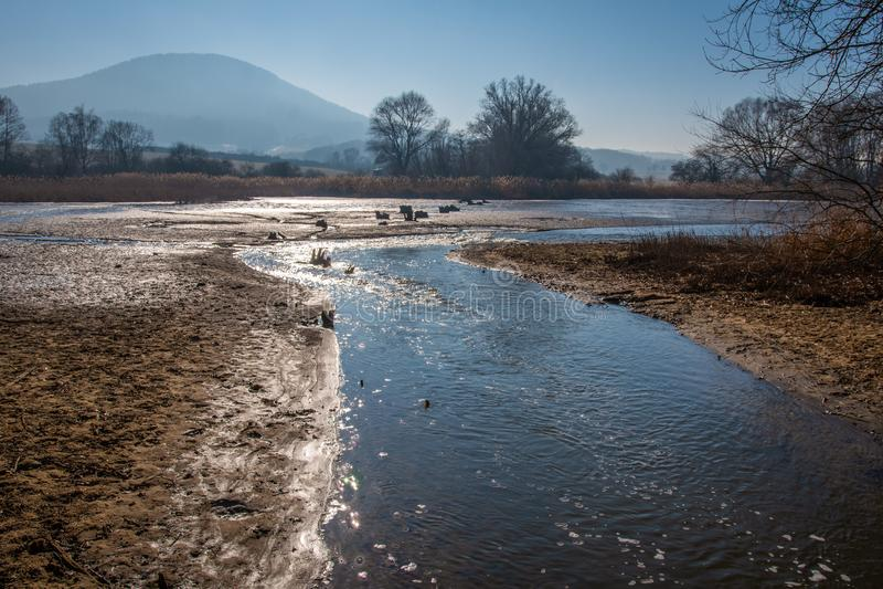 日落的被发射的池塘在春天 免版税库存照片