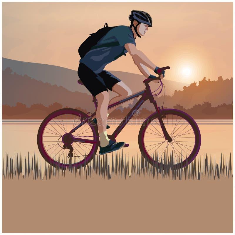 日落的骑自行车者 皇族释放例证