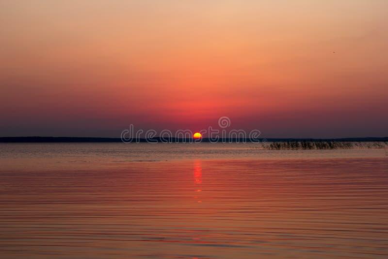 日落的,Leningradskaya oblast,俄罗斯联邦美丽的湖 库存图片