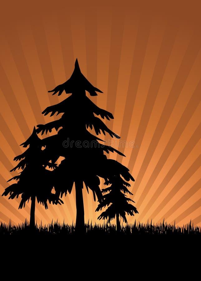 日落结构树 皇族释放例证
