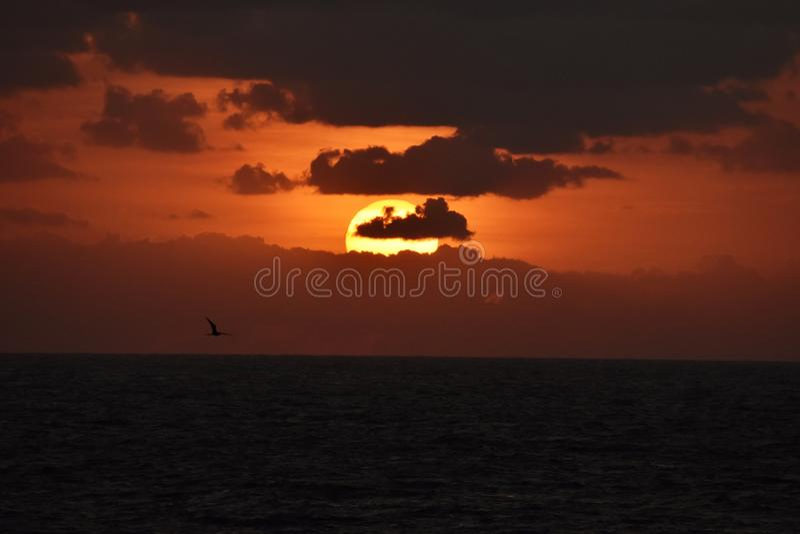 日落美丽的射击在墨西哥湾 免版税库存照片