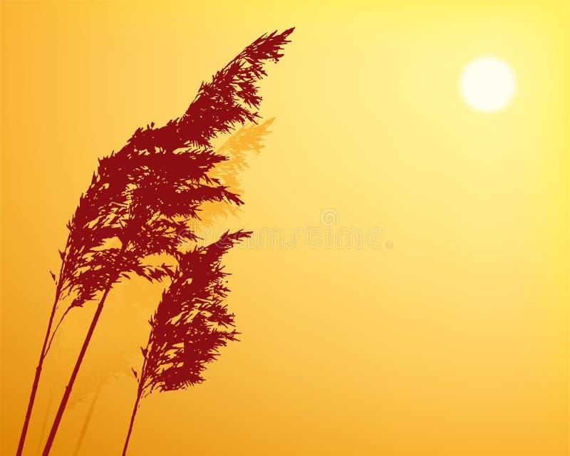 日落背景与植物剪影和拷贝空间的 向量例证