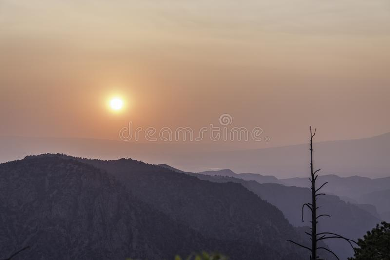 日落通过森林火灾烟 免版税库存图片