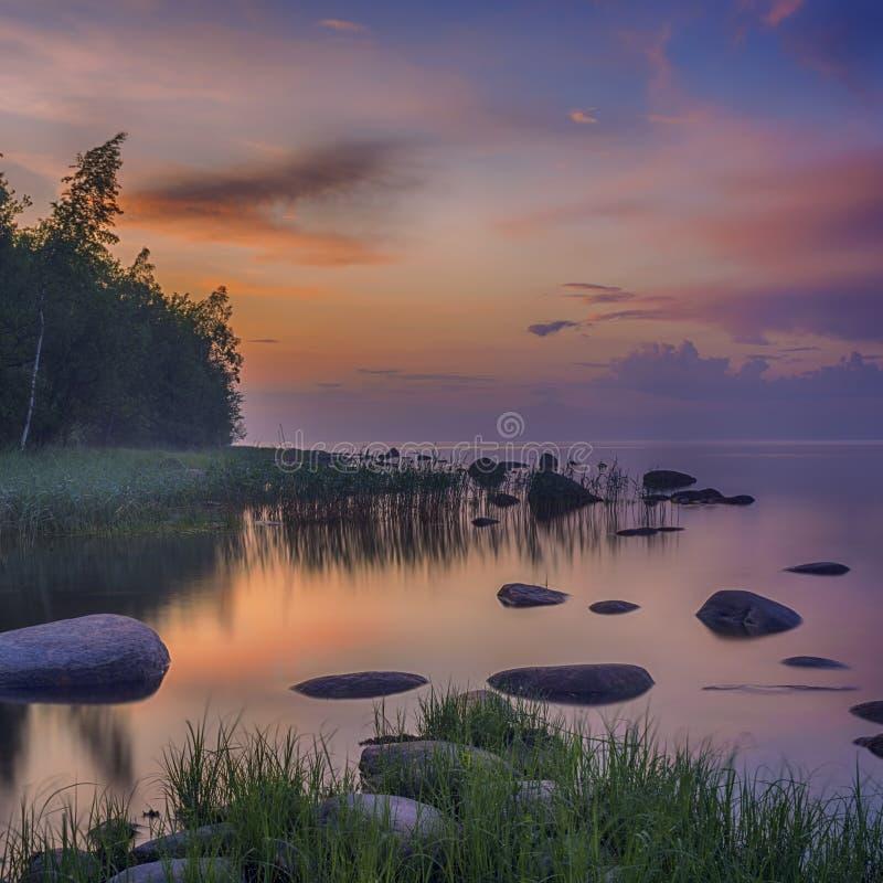 日落长的曝光在Ladoga湖的 美好的scape用石海滩、芦苇和水 Ladoga湖,卡累利阿,俄罗斯 库存照片
