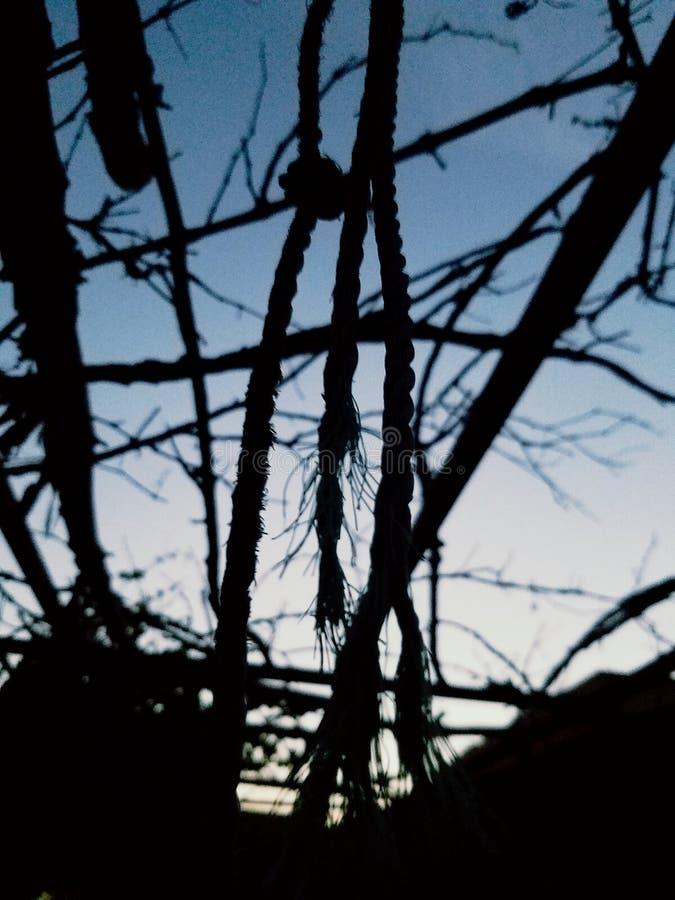 日落黑暗 库存照片