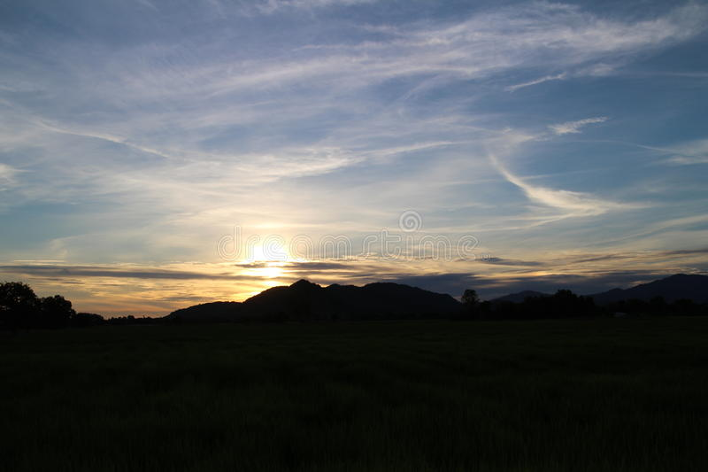 日落,与清楚的蓝天的金子颜色 库存照片