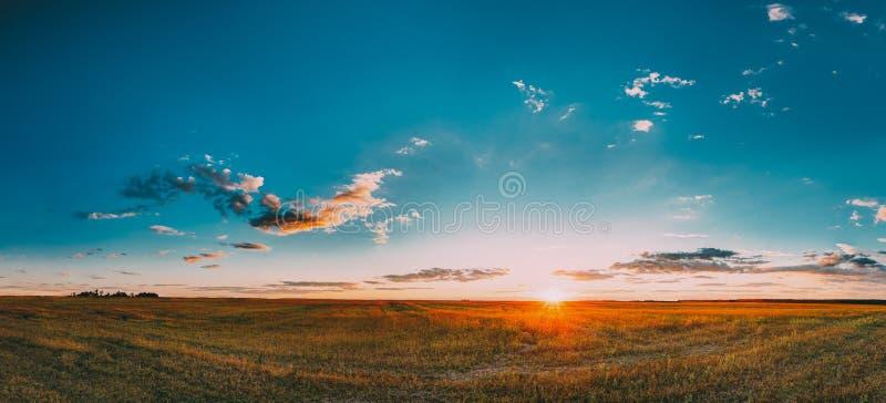 日落,日出农村草甸领域在8月月 乡下 免版税库存图片