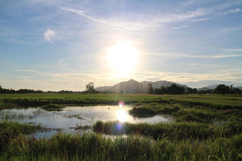 日落,阴影在池塘 库存图片