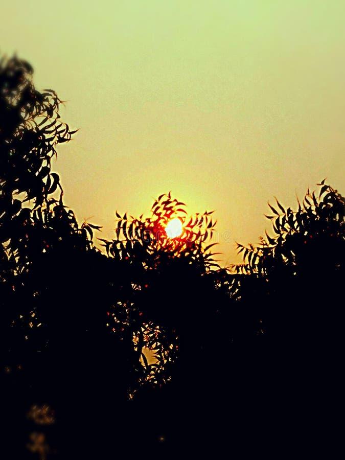 日落 太阳点 轻的星期日 晚上太阳场面 免版税库存图片