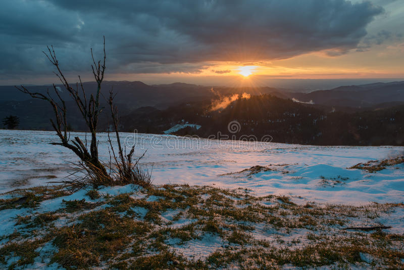 日落黑森林 图库摄影