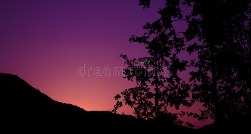 日落紫色 免版税库存图片