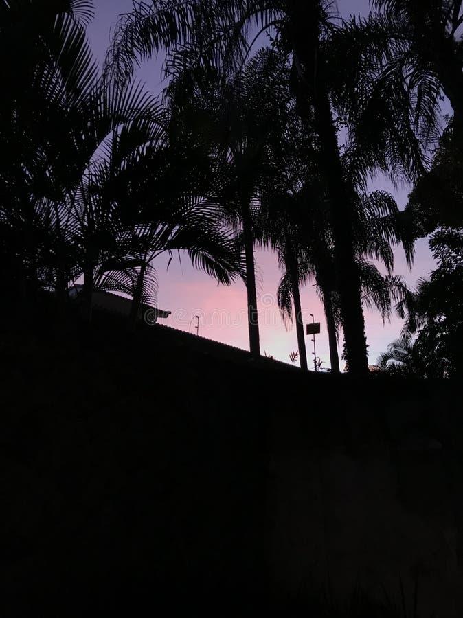 日落 免版税图库摄影
