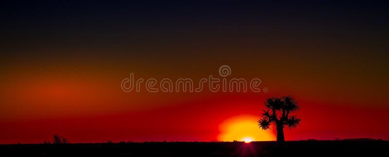 日落Namaqualand自然区域南非 免版税图库摄影