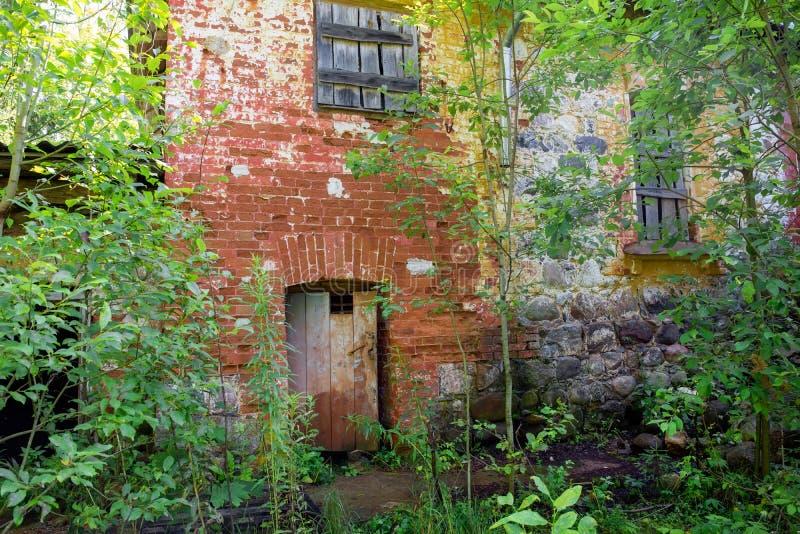 旧房子的地下室门 免版税图库摄影