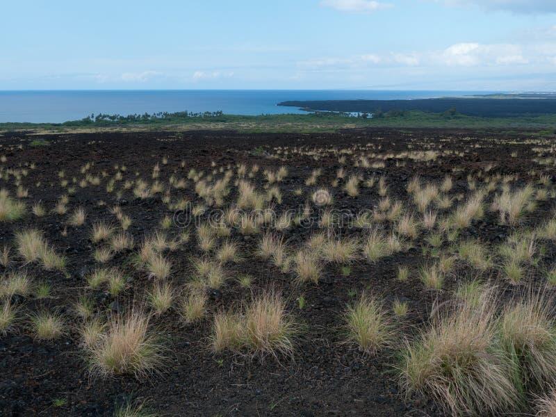 更旧的熔岩流毛伊夏威夷 免版税库存图片
