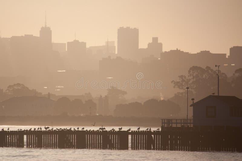 旧金山在黎明 库存图片